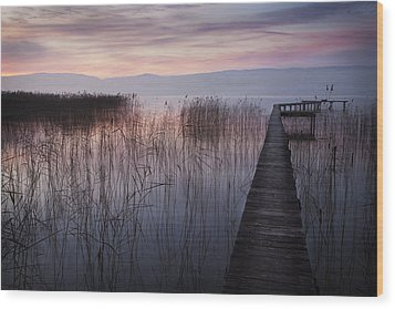 A Lake A Pier And Some Reeds Wood Print