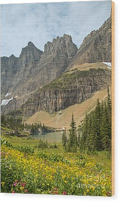 A Lake Near Iceberg Lake Along The Trail Wood Print by Natural Focal Point Photography
