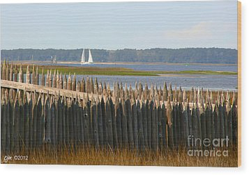 Wood Print featuring the photograph A Lazy Morning Along The Mighty Cape Fear River by Phil Mancuso