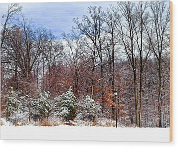 A Light Dusting Wood Print by Frozen in Time Fine Art Photography