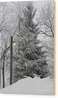A Light Snow Wood Print by Lois Bryan