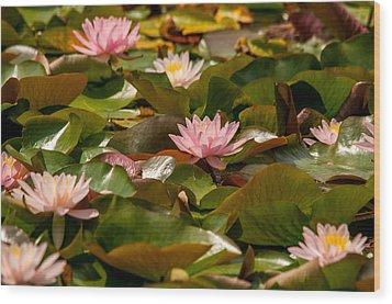 A Lily Carpet Wood Print