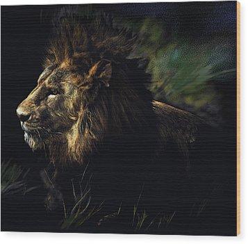 A Lion #1 Wood Print by John Norman Stewart