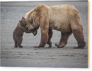 A Little Bear Hug Wood Print