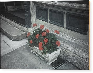 Wood Print featuring the photograph A Little Color In A Drab World by Rodney Lee Williams