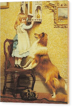 A Little Girl And Her Sheltie Wood Print by Charles Burton Barber