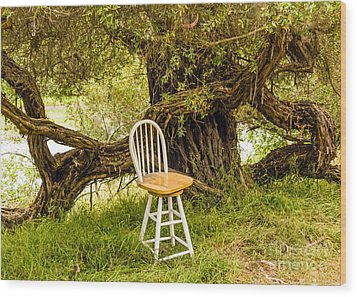 A Little Solitude Wood Print