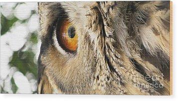 Wood Print featuring the photograph Bubo Bubo- Eurasian Eagle Owl. Close Up. by Ausra Huntington nee Paulauskaite