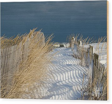 Wood Print featuring the photograph A Long Way From Summer by Stephen Flint