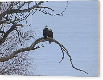 A Majestic Pair Wood Print by Rhonda Humphreys