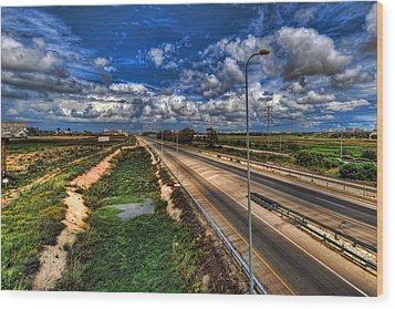 Wood Print featuring the photograph a majestic springtime in Israel by Ron Shoshani