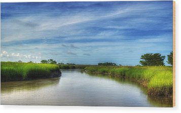 A Marsh At Jekyll Island Wood Print