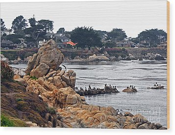A Misty Day At Pacific Grove Wood Print by Susan Wiedmann