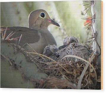 Wood Print featuring the photograph A Mothers' Love by Deb Halloran