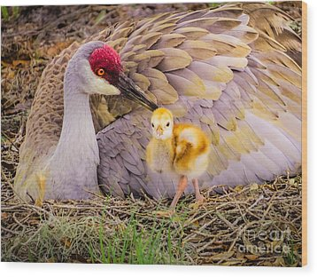 A Mother's Lovely Touch Wood Print by Zina Stromberg