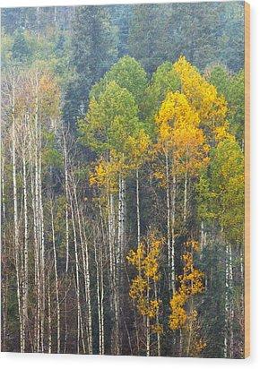 A Muted Fall Wood Print by Rick Furmanek