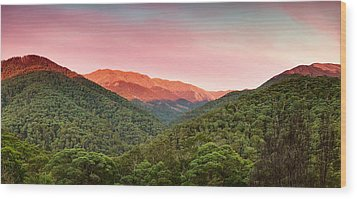 A Natural Highlight Wood Print by Mark Lucey