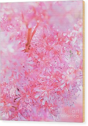 A Natural Pink Bouquet Wood Print by David Perry Lawrence