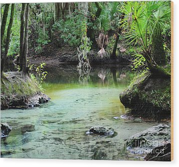 A Natural Spring Wood Print by Nancy Greenland