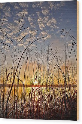 A New Day Begins ... Wood Print by Juergen Weiss