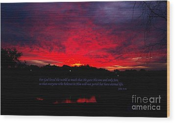 A New Day Wood Print by Robert ONeil