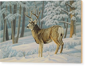 A Nice Buck Wood Print by Paul Krapf
