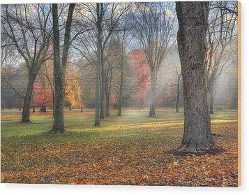 A November Morning Wood Print by Bill Wakeley