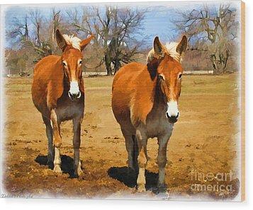 A Pair Of Mules  Digital Paint Wood Print