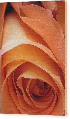 A Pareo Rose Wood Print by Joe Kozlowski