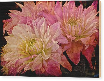 A Pastel Bouquet Wood Print by Chris Lord