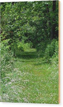 A Path Of Clover Wood Print by Eva Thomas