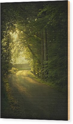 A Path To The Light Wood Print