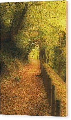 A Path Well Chosen Wood Print