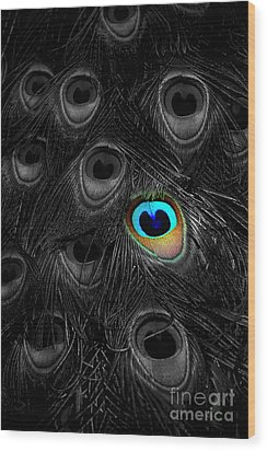 A Peacock Feather Wood Print by Mike Nellums
