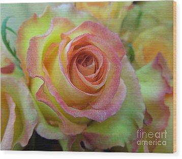 A Perfect Rose Wood Print