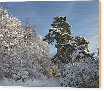 A Perfect Winterday Wood Print