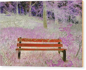 A Place To Rest Wood Print by The Creative Minds Art and Photography
