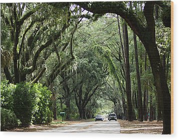 A Pretty Tree Covered Road Somewhere On Hilton Head Island Wood Print