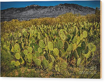 Wood Print featuring the photograph A Prickly Pear View by Mark Myhaver