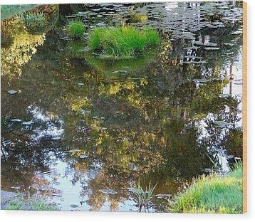 A Quiet Little Pond Wood Print by Ira Shander