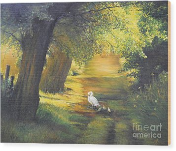 A Ray Of Sunshine  Wood Print by Sorin Apostolescu