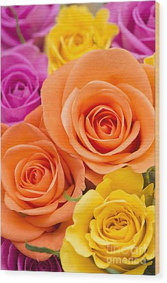 A Riot Of Roses Wood Print by Anne Gilbert