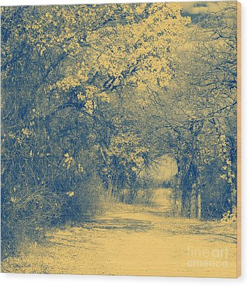 A Road Framed With Trees Wood Print by Mickey Harkins