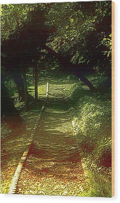 A Road Less Travelled Wood Print by Tim Ernst