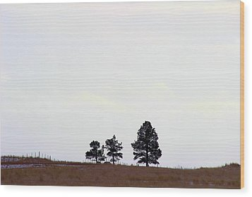 A Road Runs By It Wood Print