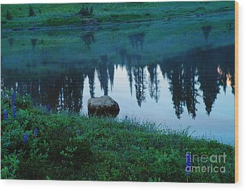 A Rock In The Reflection Wood Print by Jeff Swan