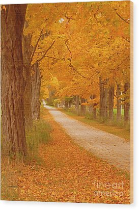 A Romantic Country Walk In The Fall Wood Print by Lingfai Leung