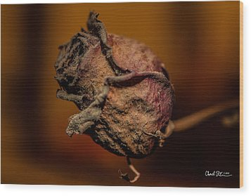 A Rose By Any Other Name... Wood Print by Charlie Duncan