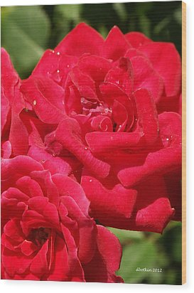 Wood Print featuring the photograph A Rose By Any Other Name by Dick Botkin