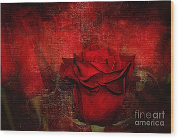 A Rose For You Wood Print